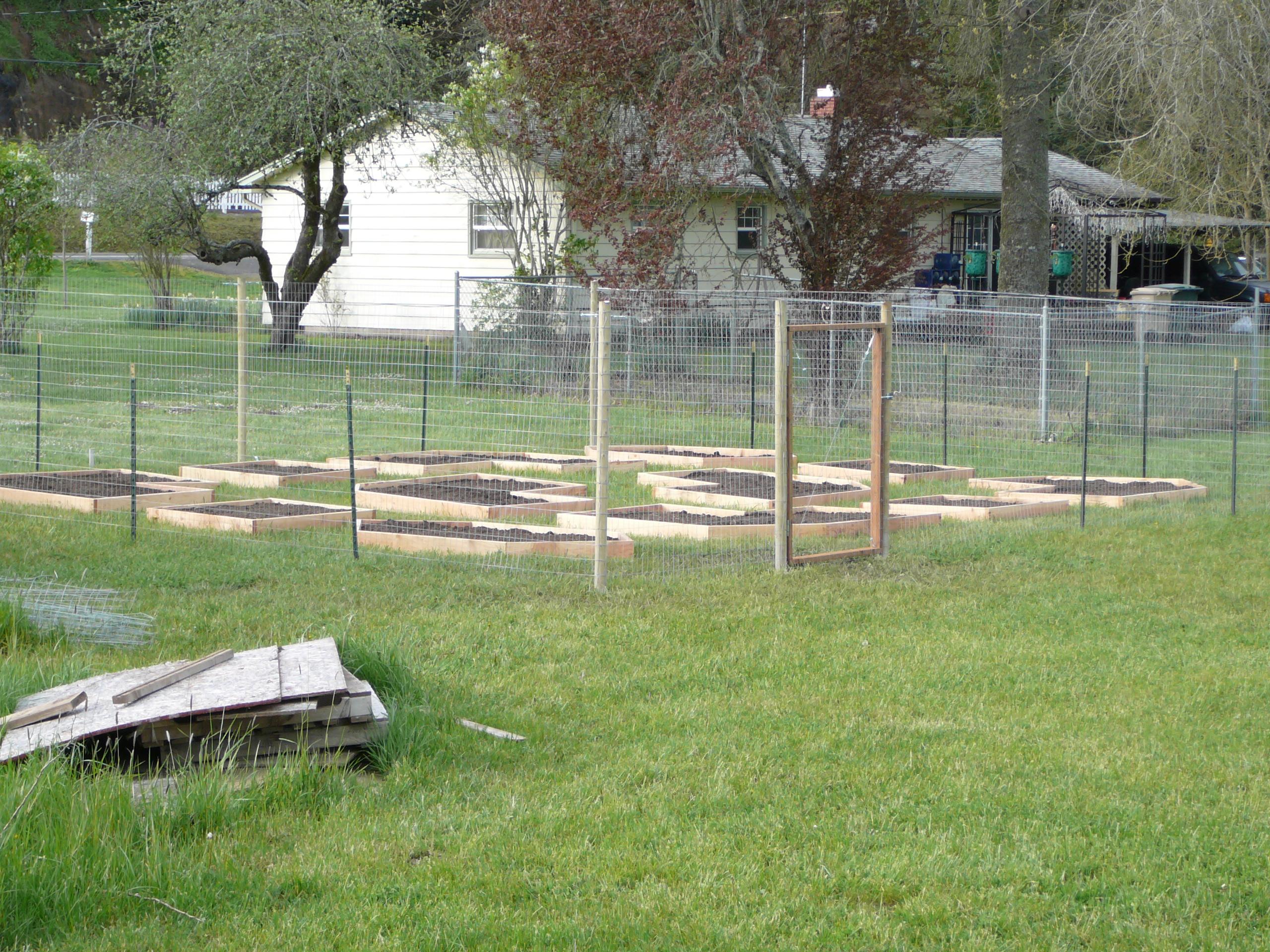 garden fence north albany garden blog